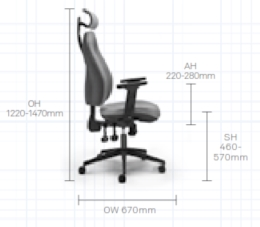 Orthopaedica Back Care Chair Dimensions