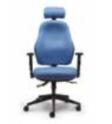 Orthopaedica Back Care Chair Model