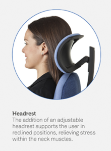 Orthopaedica Back Care Chair Features
